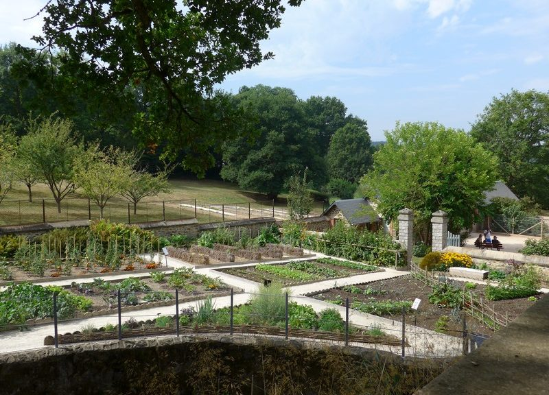 domaine du gasseau jardin